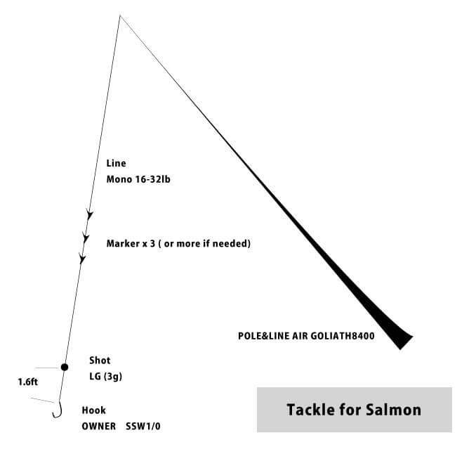salmon fishing rig